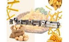 semi automatic frozen french fries machine