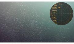 BlueROV2: Echologger MRS900 Scanning Sonar Testing Video