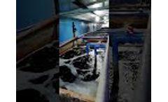 Dereike Side Channel Blower Application - Waste Water Treatment Aeration- Video