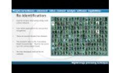 Viseum Intelligent Video Analytics Software Video