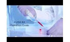 Sandwich ELISA Kit Operation Guide - Elabscience- Video