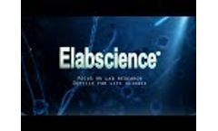 Introduction to Elabscience Biotechnology - Video