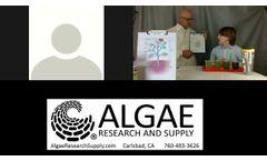 Basic Algae Culture Class for Nannochloropsis - Video