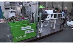 Spinder Cuddle Box, koe bij het kalf na geboorte - www.melkvee.nl @Eurotier 2016- Video