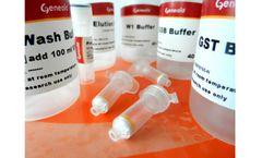 Geneaid - Model gSYNC - Blood/Tissue DNA Mini Kit (GS100, GS300)