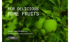 Soft Fruits Early Spring Fertilizers
