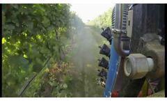Rovitis - robotics in viticulture- Video