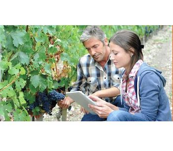 Agreo Vigne - Vine & Wine Software
