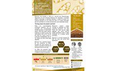 Bioextrax - Organic Hydrolyzed Protein- Fact Sheet