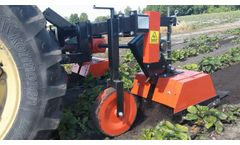 Rotary cultivator on strawberry plantation - Video