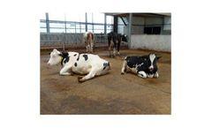 TenCate - Flooring Components for Livestock Farming