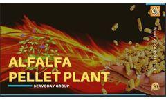 Servoday Alfalfa Pellet Plant Presentations