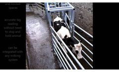 ODE Cattle Draft System - Video