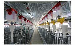 Hengyin - Chain Feeding System