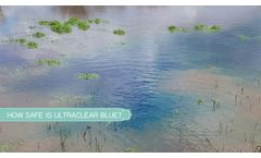 Benefits of adding Blue Pond Dye and does it really work? - Video