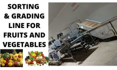 Sorting and Grading For Fruits And Vegetables | Sorting & Grading Equipment | Fruit sorting machine - Video