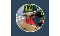 Anteo FishCtrl - Fish Wellfare Data Analytical Tool