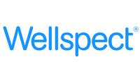 Wellspect HealthCare