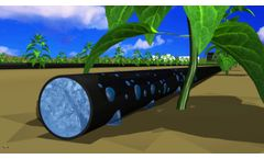 Irrigation by Condensation (IBC) - Video
