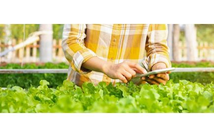 How crop registration boosts quality, quantity & consistency