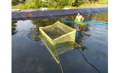 How to Choose HDPE Pond Liner Sheet for Fish Pond Project in Kenya?