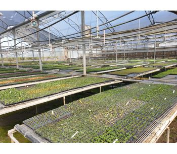 AGRIMAT - Magen's root zone heating system for greenhouses