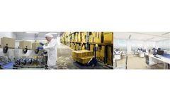 Ergonomic Solutions Services