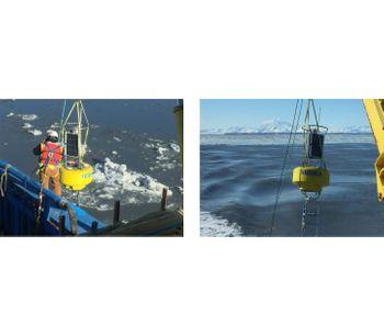 Aridea Uses Buoy-Based Monitoring with the Aqua TROLL 600 in Critical Whale Habitat
