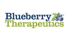 Nanopolymer Drug Delivery Systems