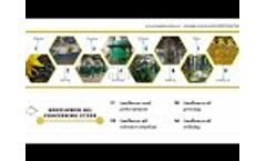 Sunflower oil processing machine and sunflower oil production process showing - Video
