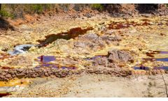 Comparing Remediation & Bioremediation: Which is best, and when?