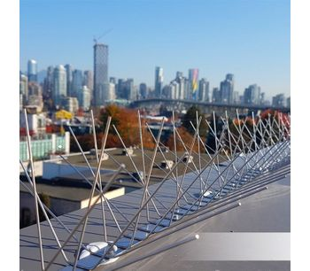 Stainless steel bird spikes - Health and Safety - Pest Control
