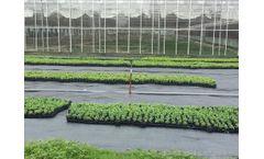 Longxing - Weed Control Mat