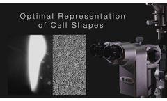 TAKAGI TD-10 EyeCam: Full Capability Imaging System - Video