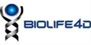 3D Bioprinting Process