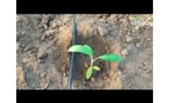 Driptime Irrigation System Contact Details - Video