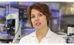 Tissue Banking at U.S. Stem Cell, Inc USRM - Video