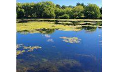 New Pond & Lake Treatment Range