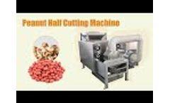 Dry peanut peeling and half cutting machine - Video