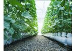Air filtration solutions & corrosion monitors for agricultural facilities & grow houses - Agriculture