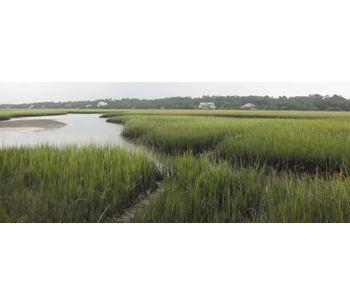 Aquatic Plant & Habitat Surveys