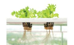 Water Treatment for Hydroponics Industry