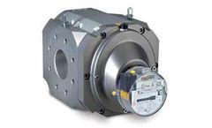 Elster - Model RABO G16 - G250 - Rotary Gas Meter