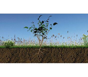 ph determination for soil testing - Soil and Groundwater - Soil and Groundwater Monitoring and Testing