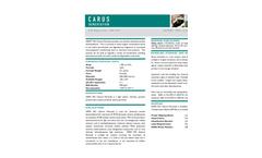 IXPER 70C Calcium Peroxide - Datasheet