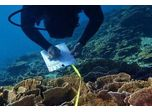 Project - Reef Monitoring