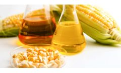 Environmental solutions for bioethanol industry