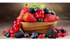 Food & beverages solutions for fruit industry