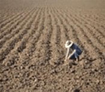 AUS$28.5m Govt funding for soil carbon projects