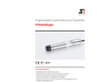 STS- - Model PTM/N/RS485 - Programmable Level Transmitter - Datasheet
